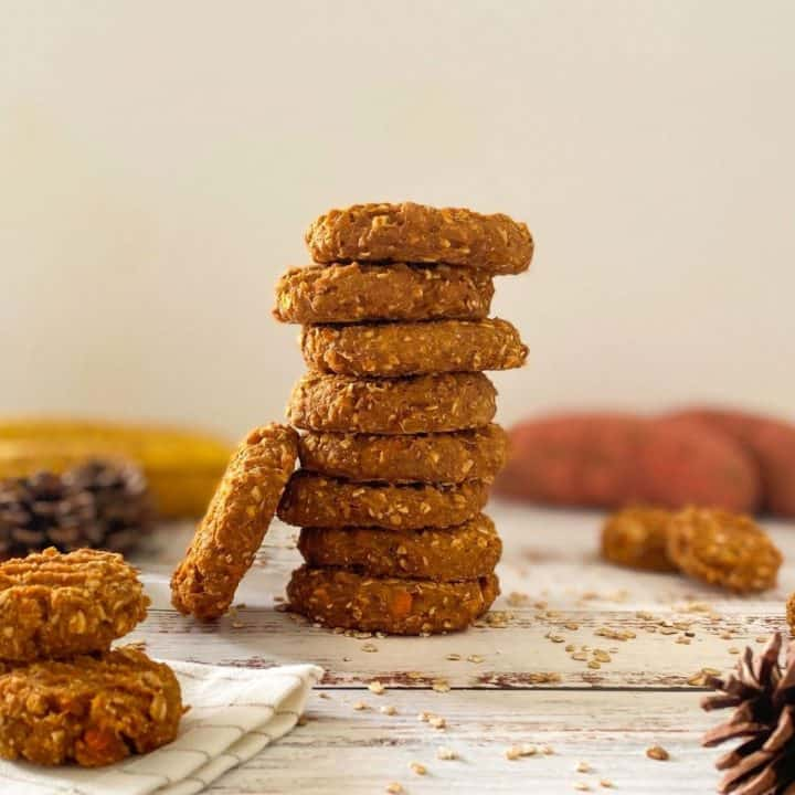 stack of cookies with one cookie leaning on the stack.