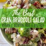 Cranberry broccoli salad PIN with text overlay.