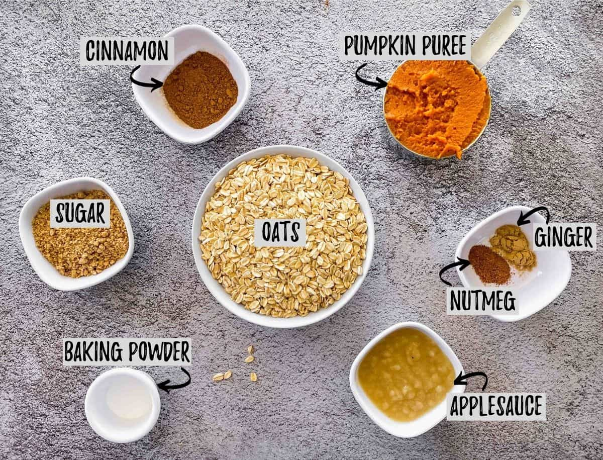 Bowls of oats, spices, pumpkin puree and apple sauce scattered on concreate surface.