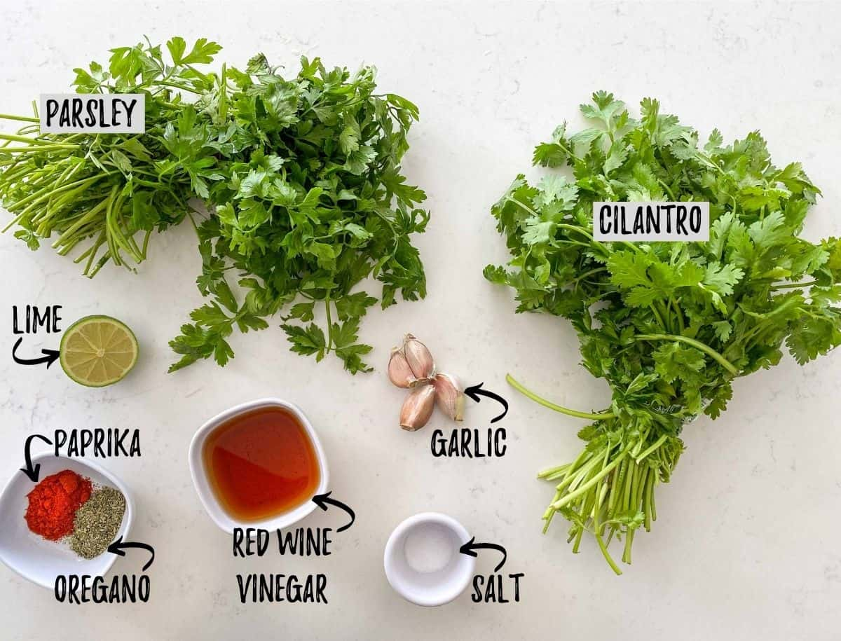 Herbs, spices, vinegar, garlic and lime scattered on quartz counter top.