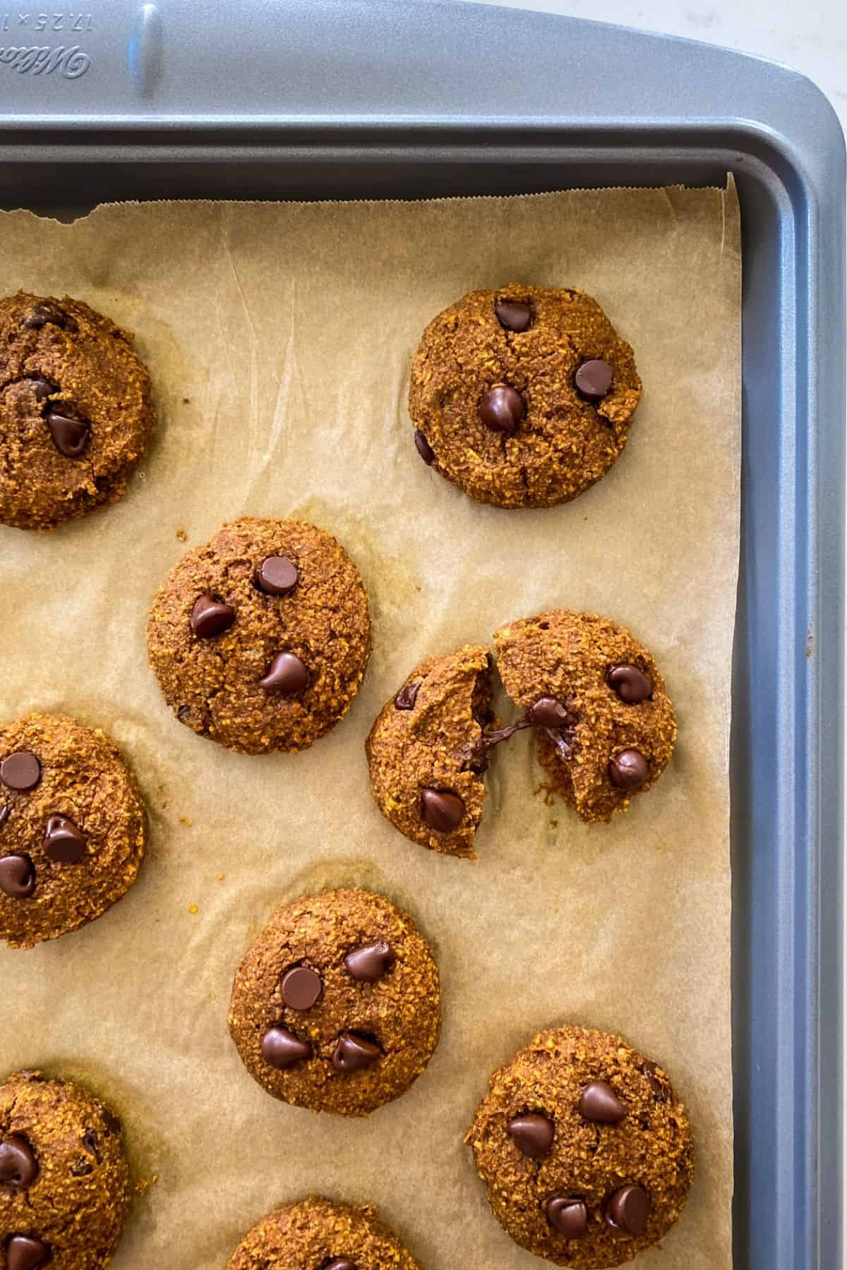 Baked cookies on tray with one cookie split in half and chocolate chip stretching from one half to the other.
